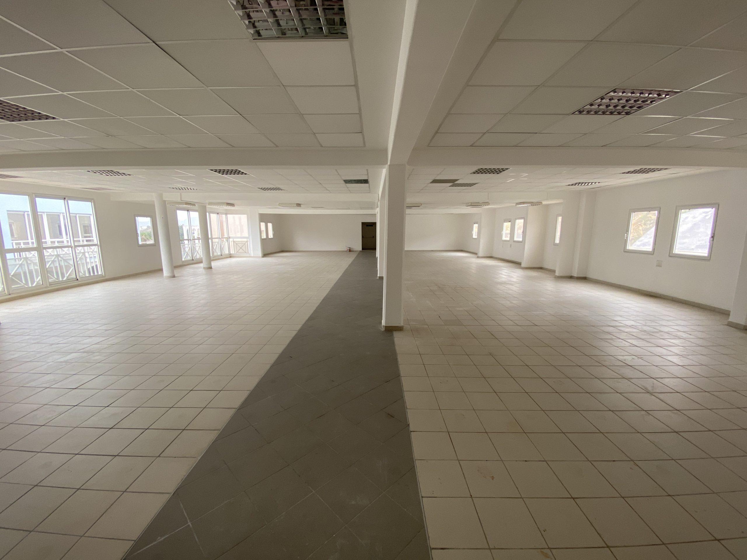 LOCAUX PROFESSIONNELS 550M2 RUE PIETONNE RIVIERE ROCHE FORT-DE-FRANCE